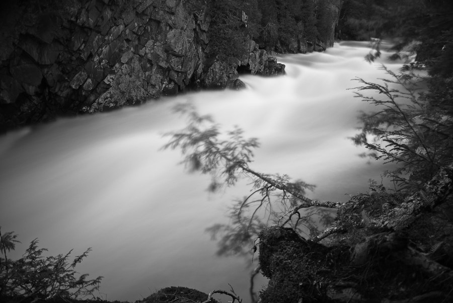 Photograph Taming the flow by Ken Smith on 500px