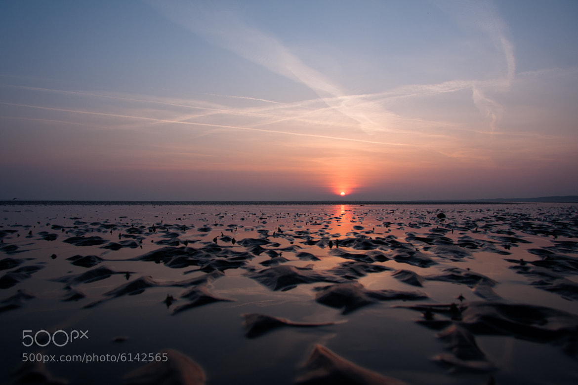Photograph Distant Sun by David Asch on 500px