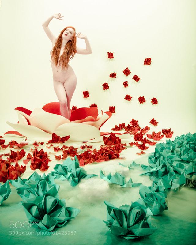 Photograph Lotus Venus by Julie Poncet on 500px