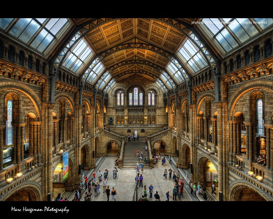 Photograph Natural History Museum by Marc Haegeman - marc-haegeman-photography.com on 500px