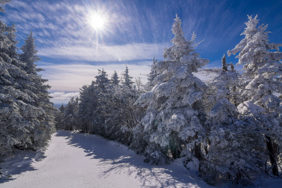 Blanketed in White by Jeff Moreau - best places to visit in USA in December