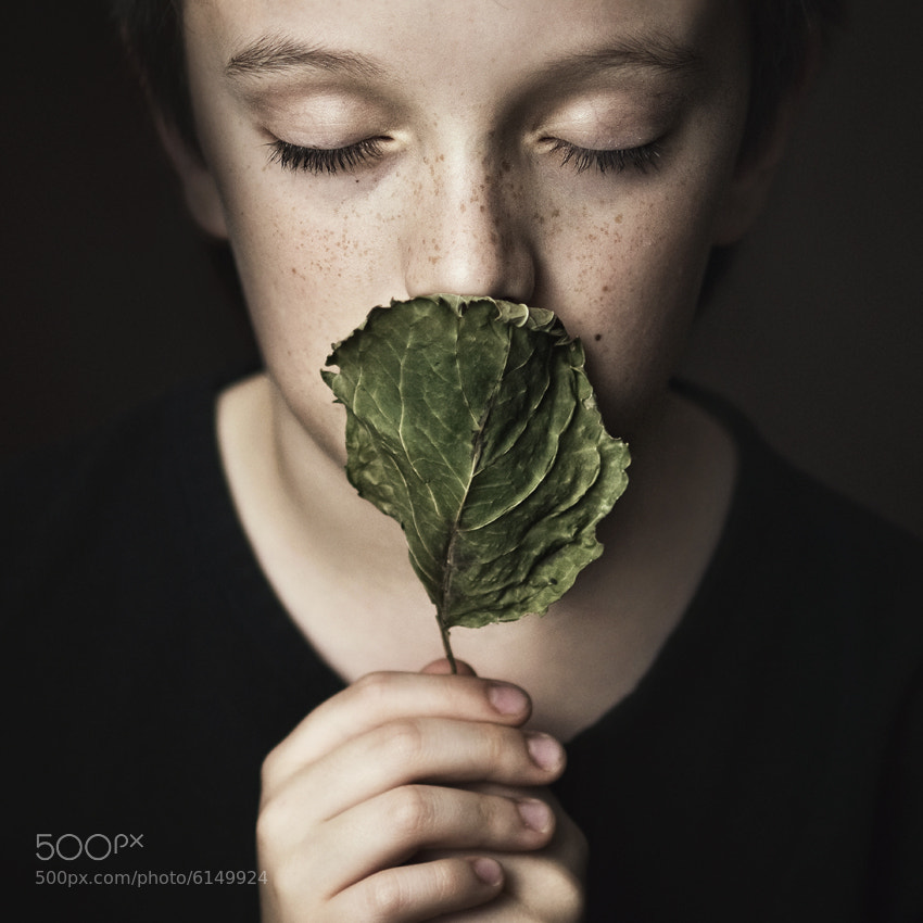 Photograph The Sense by Magdalena Berny on 500px