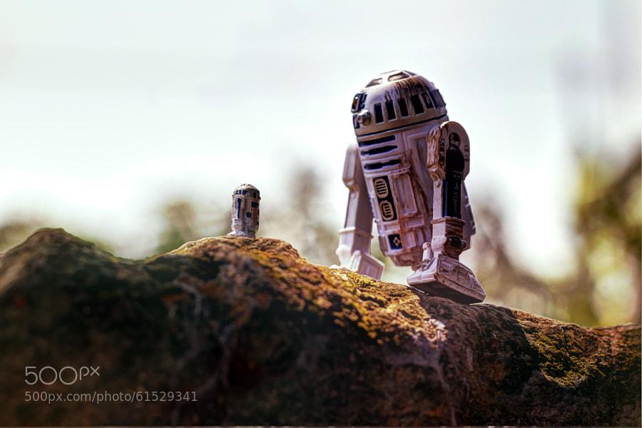 Photograph R2 Jr by Zahir Batin on 500px