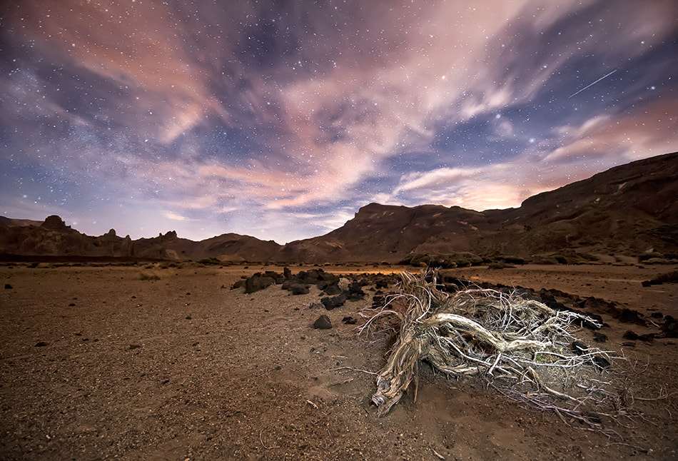 Photograph Night at Teide by Andrea Auf dem Brinke on 500px