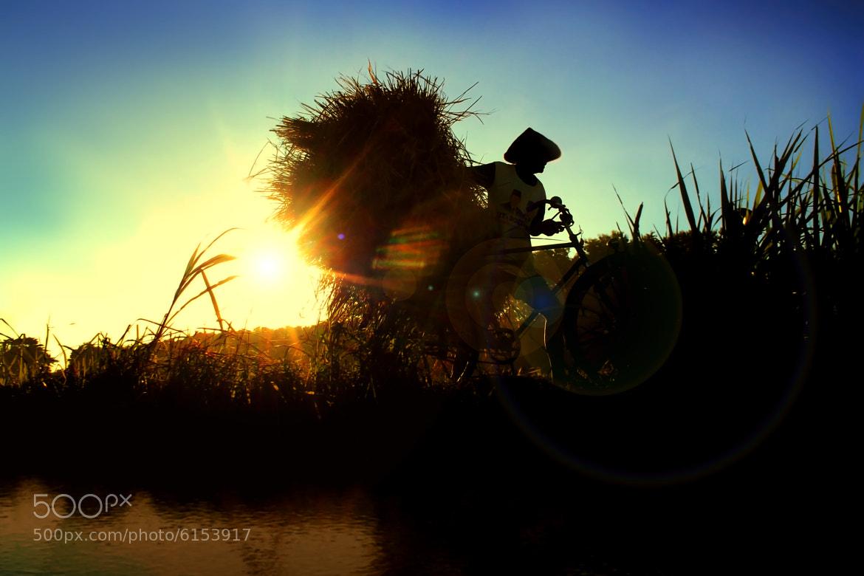 Photograph The Farmer by 3 Joko on 500px
