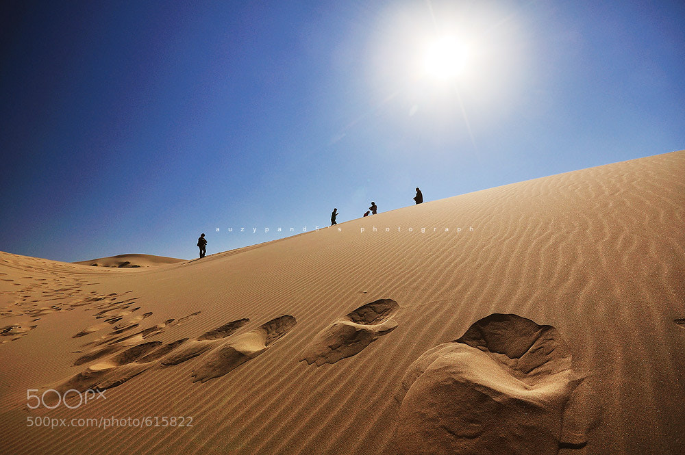 Photograph sand dune by Nathtavat  on 500px
