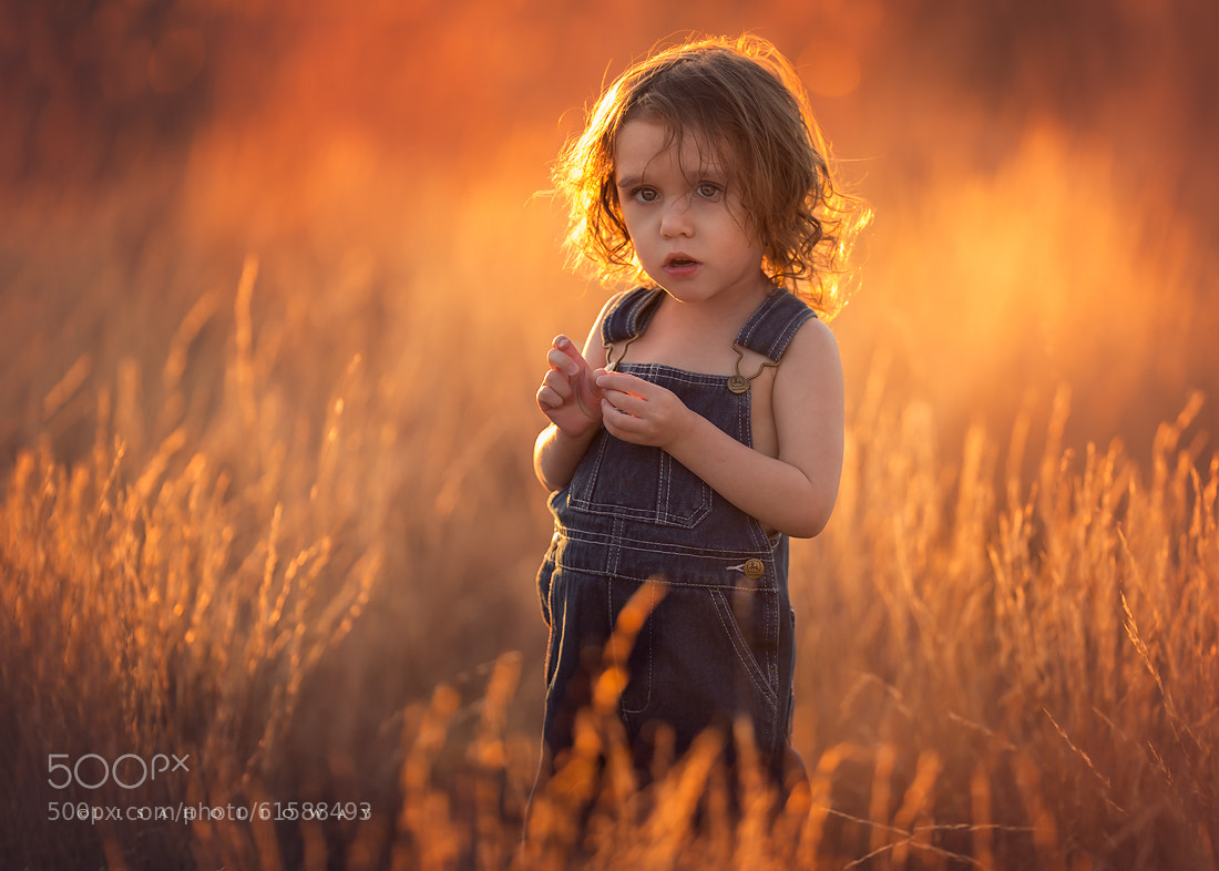 Photograph Golden Hour by Lisa Holloway on 500px