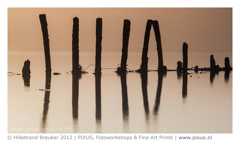 Poles at the Wadden Sea during sunrise