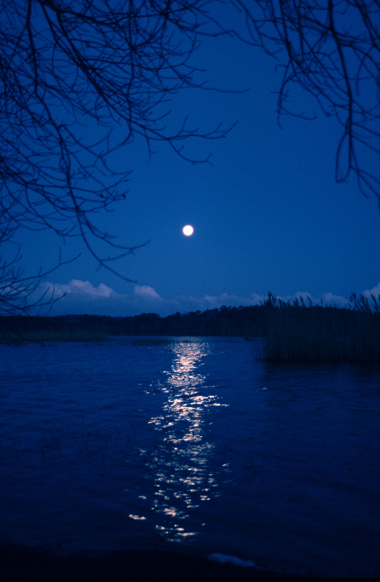 Photograph full moon by joseph Dupouy on 500px