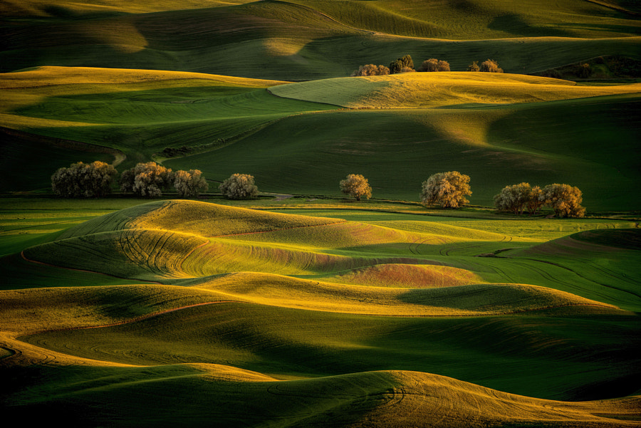 Sunrise On Steptoe Butte by Matt Kloskowski on 500px.com