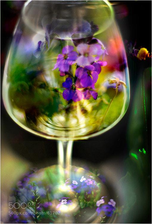 Photograph jardin suspendu by Pierrette Lu on 500px