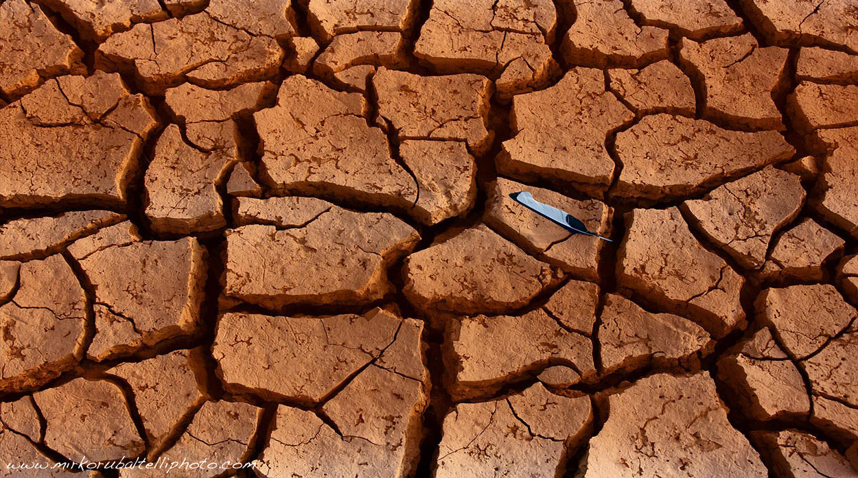 Photograph Drought  by Mirko Rubaltelli on 500px