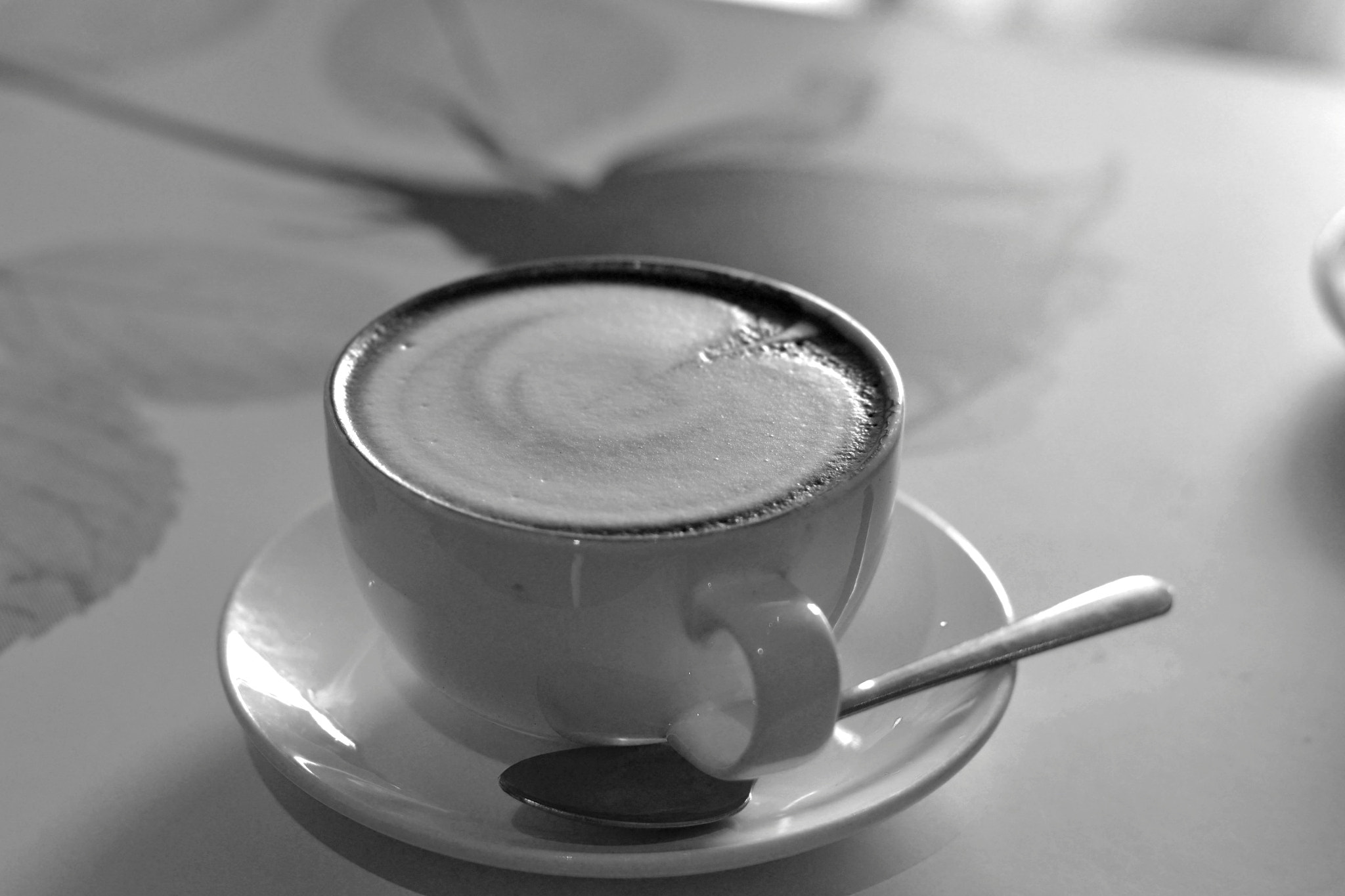Photograph Latte by Greg  Linster on 500px