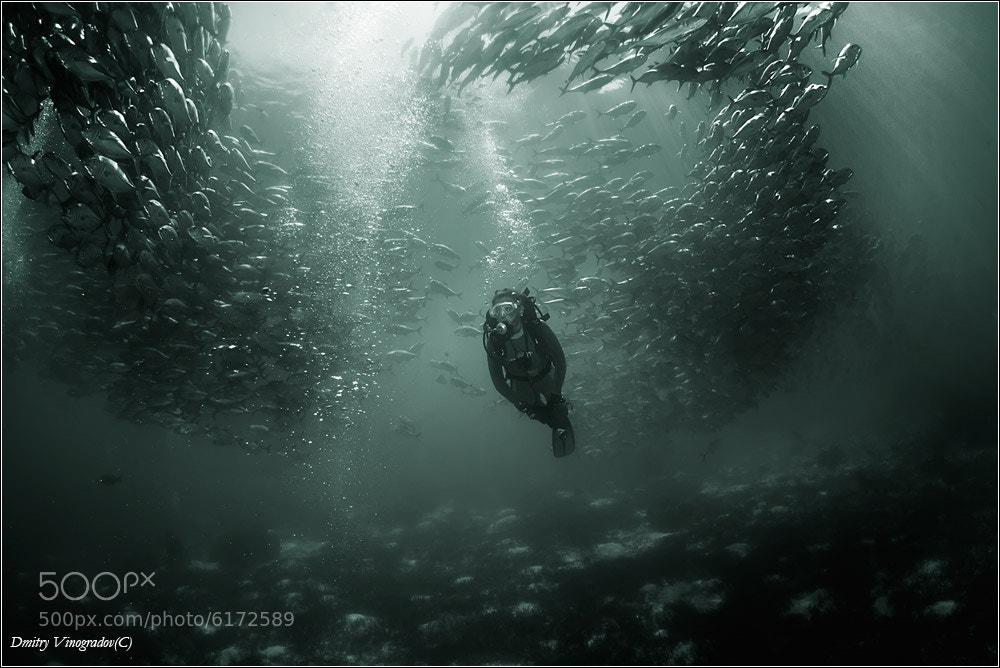 Photograph Tornado by Dmitry Vinogradov on 500px