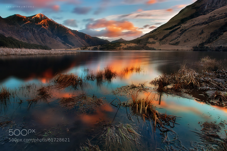 Photograph The Silent Hue by Christian Lim on 500px