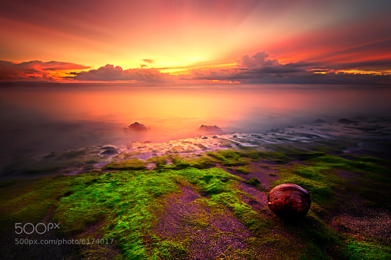 Photograph Kerandangan by Eep Ependi on 500px