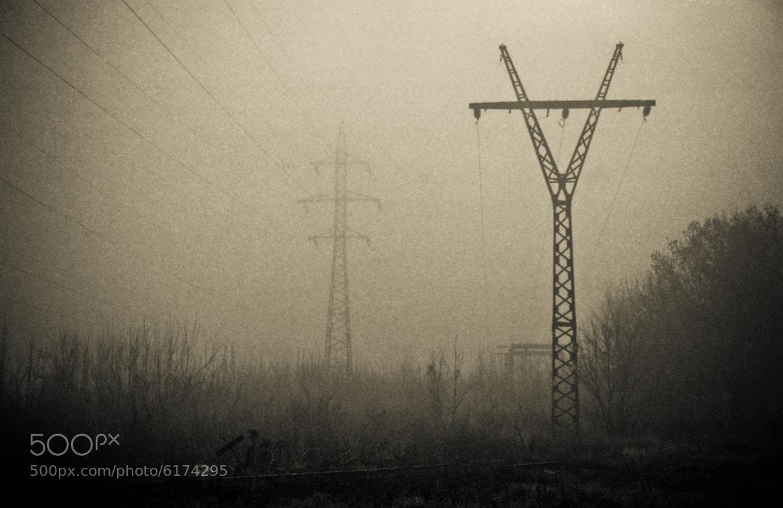 Photograph Дальние родственники by Andrey Zaika on 500px