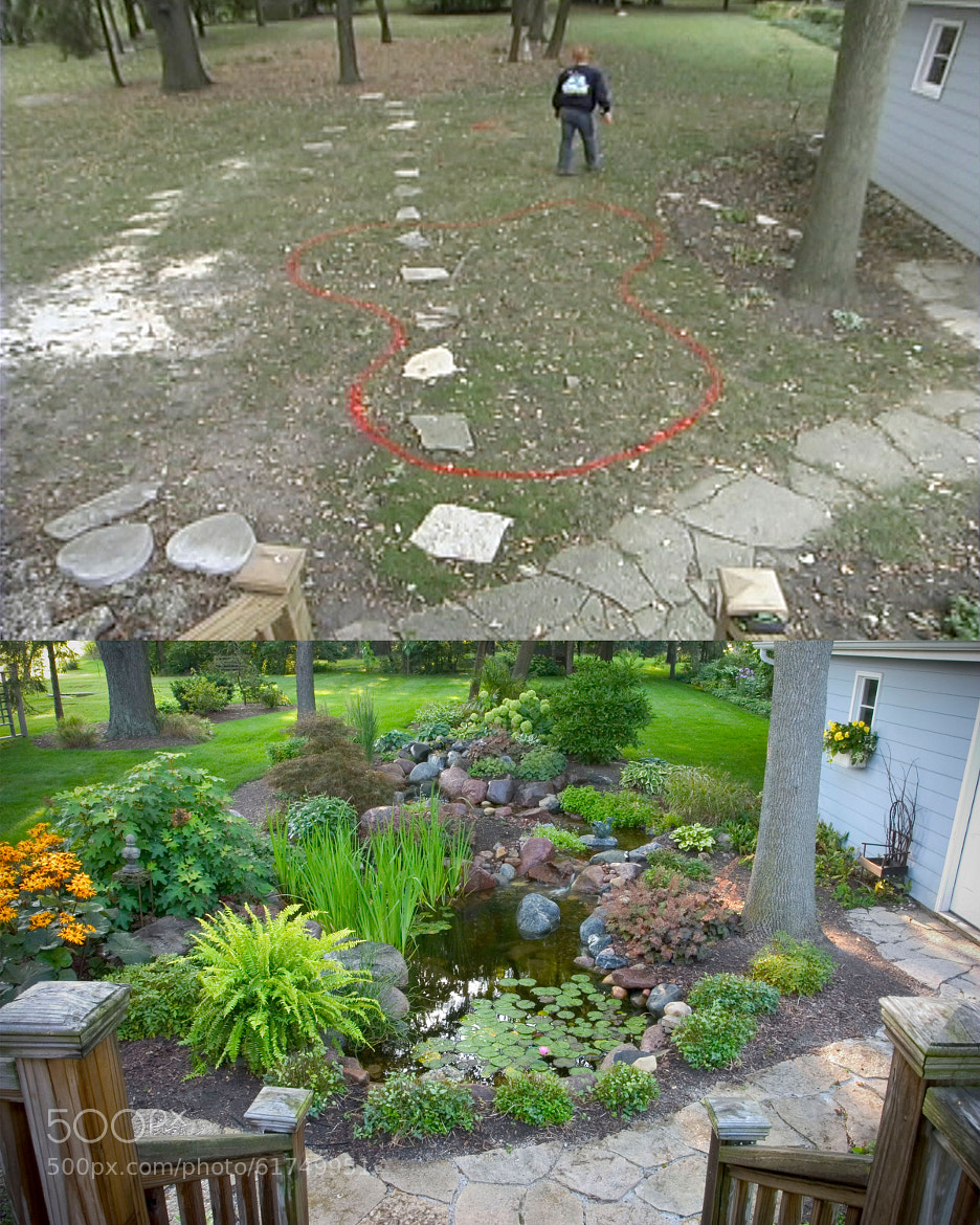 Before and After Ponds