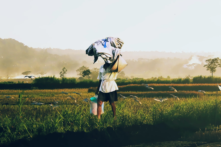 Photograph Farmer by 3 Joko on 500px