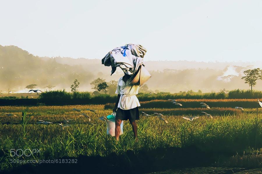 Photograph Farmer by 3 Joko on 500px