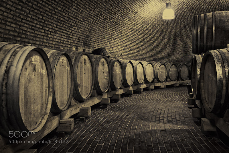 Photograph Wine cellar by Hober Szabolcs on 500px
