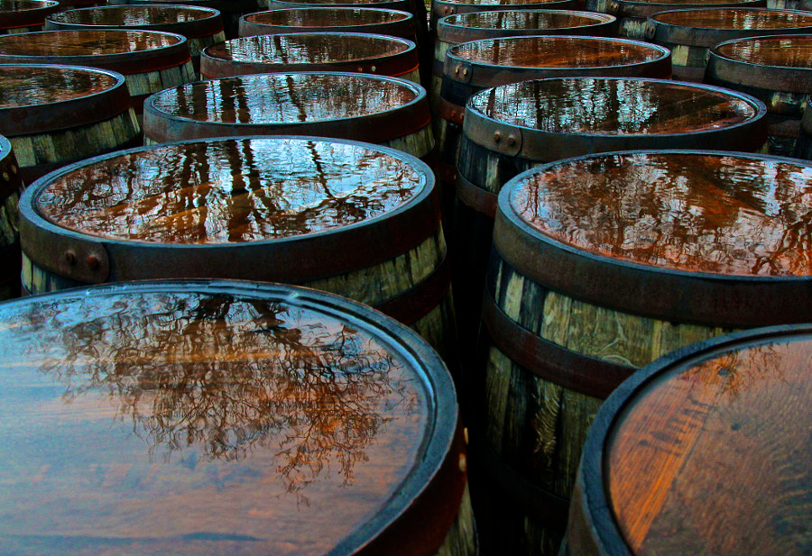 Laphroaig Reflections by Malcolm Robertson on 500px.com