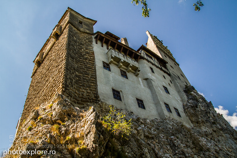 Photograph Bran Castle by Mihai Timaru on 500px