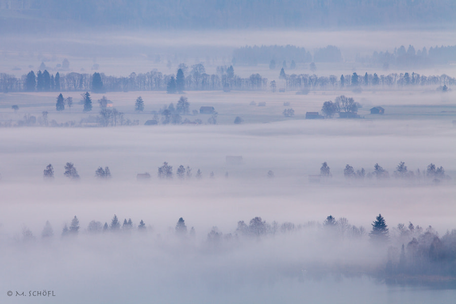 Photograph Morning Fog by Marco Schöfl on 500px