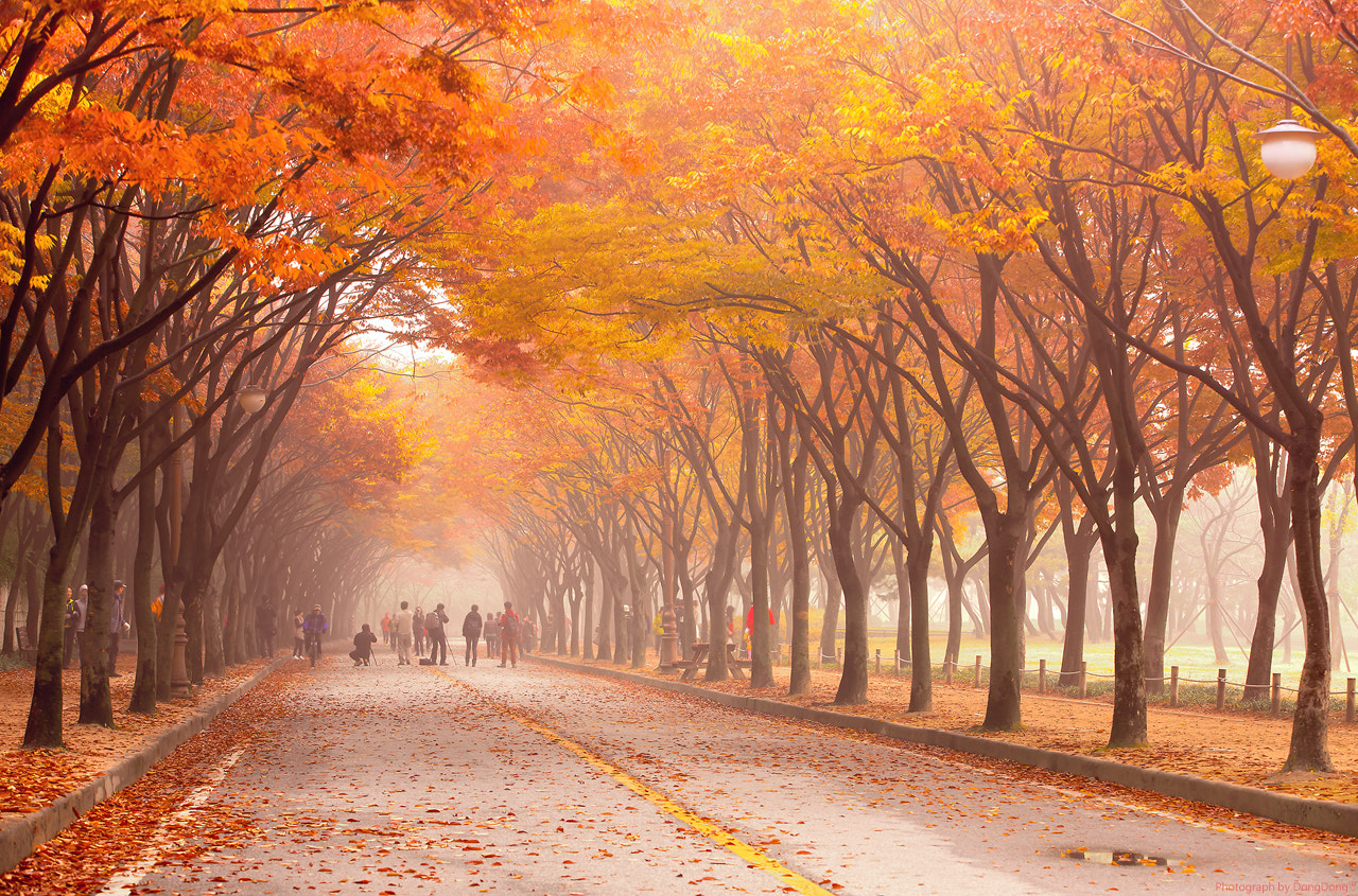 Photograph Colorful morning by SEO  on 500px