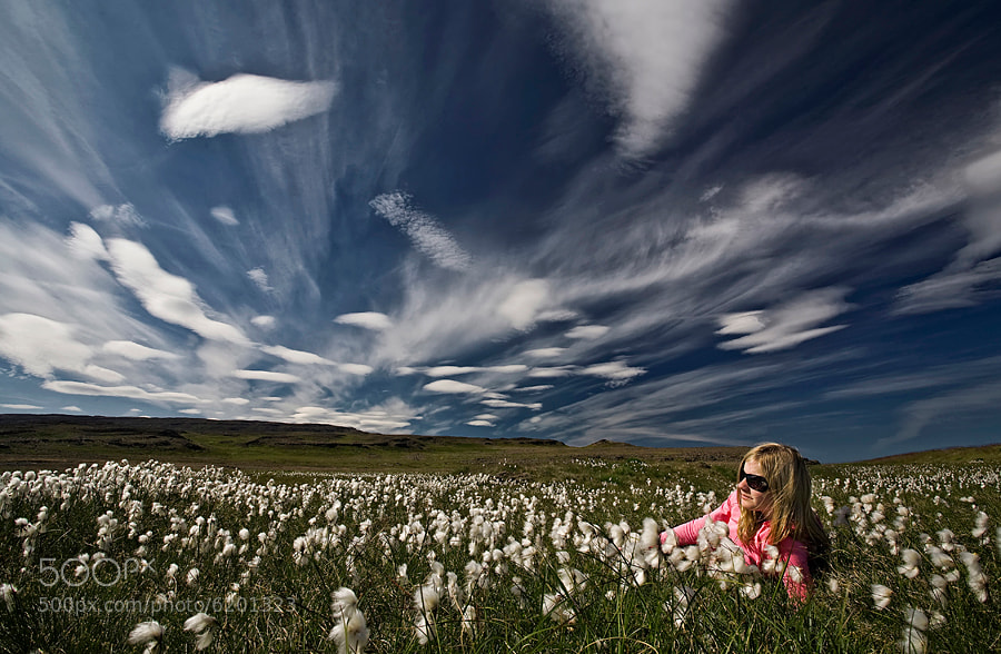 Photograph Relaxed in cotton grass by Þorsteinn H Ingibergsson on 500px