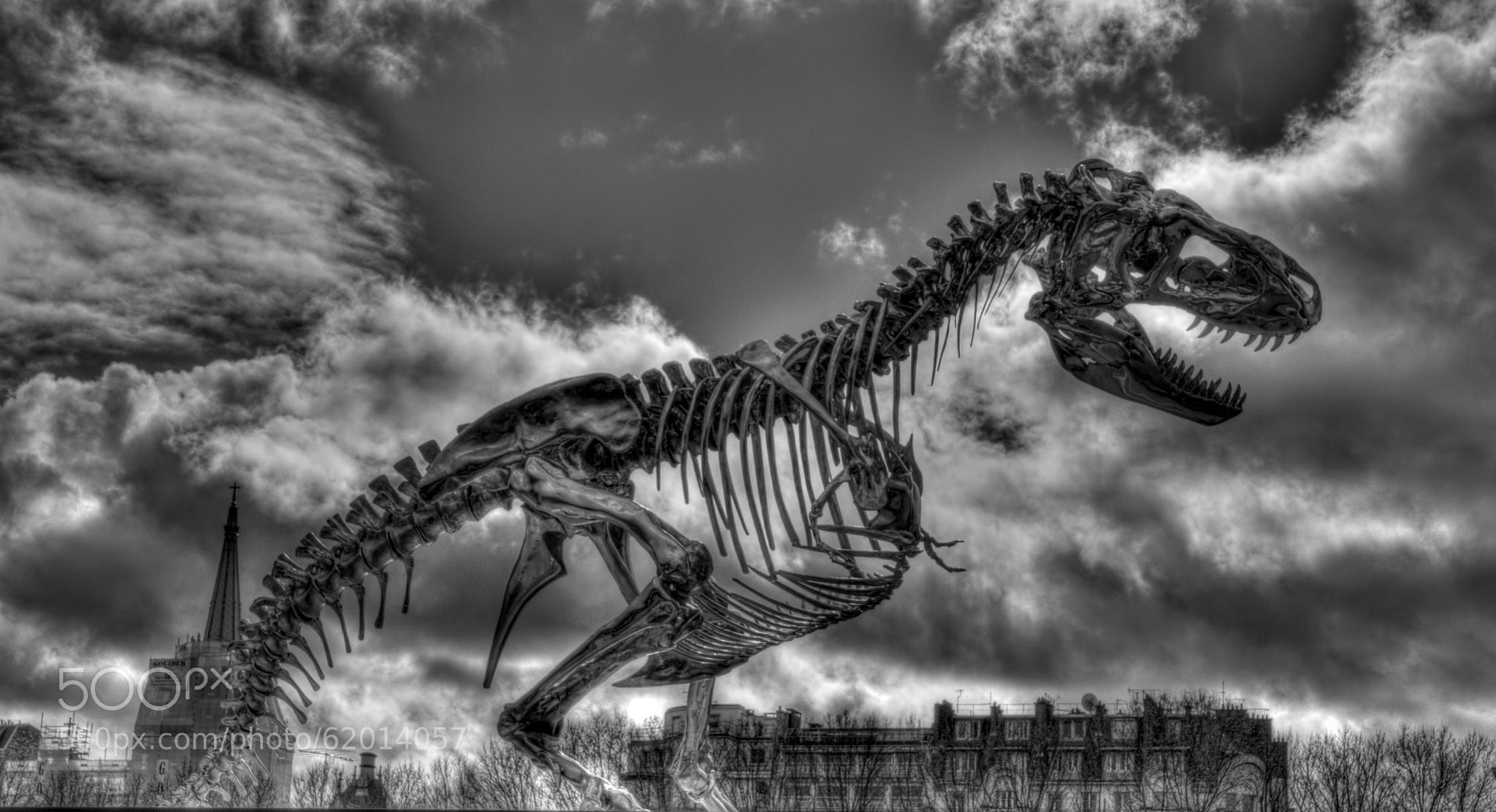 Photograph Terror in Paris by René Ladenius on 500px