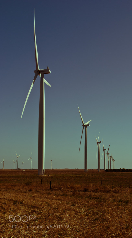 Photograph Wind farm by Scott Novak on 500px