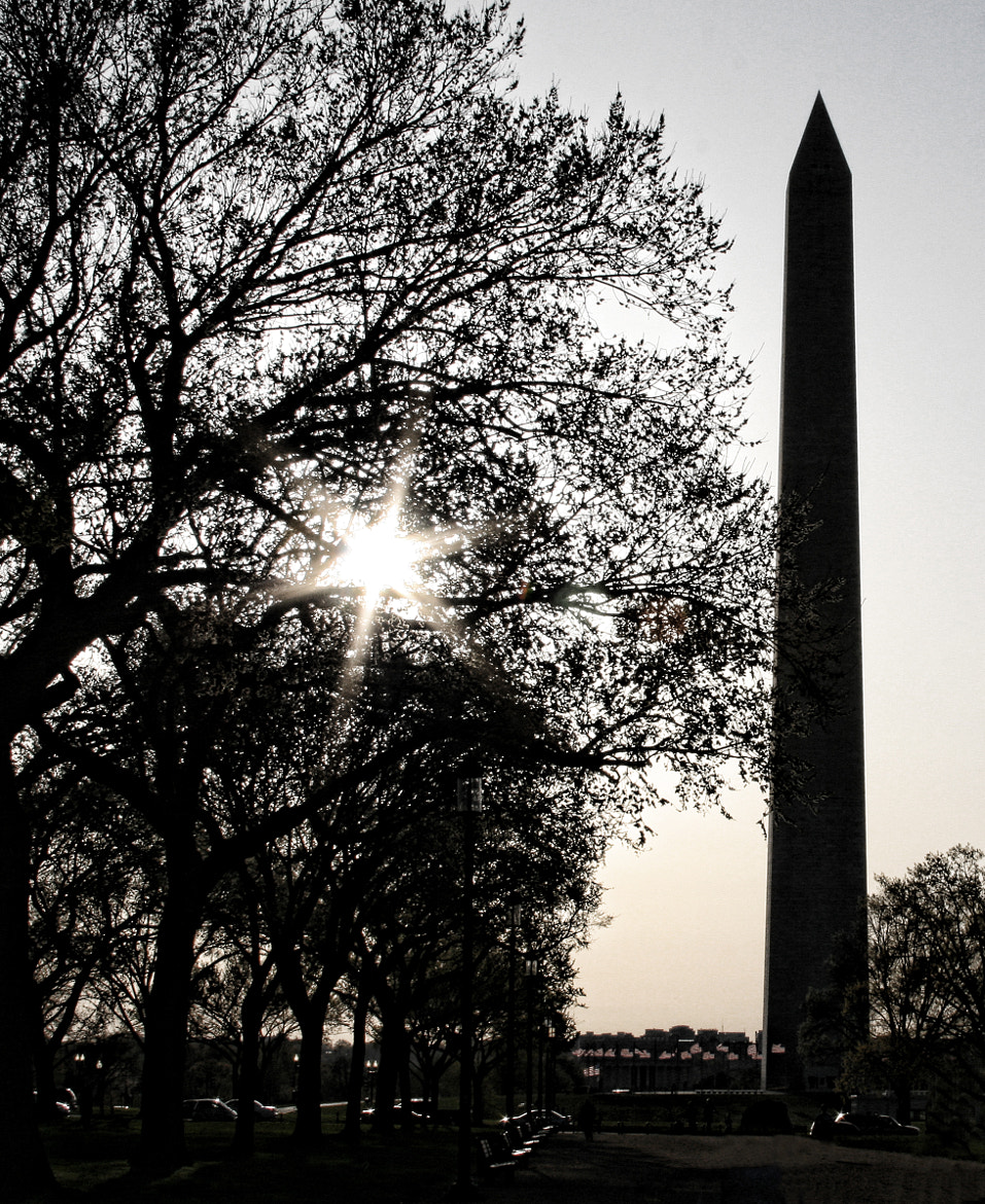 Photograph The Washington Monument by Michelle Maret on 500px