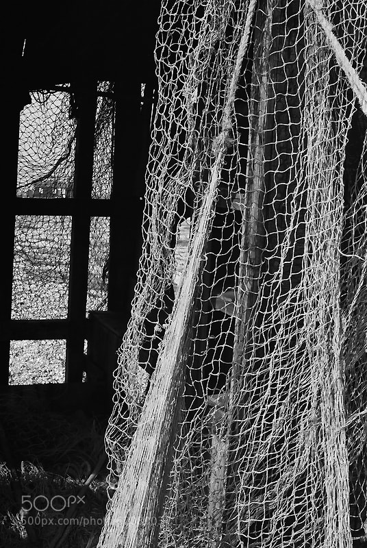 Nets by Peter Meade (pjmeade) on 500px.com