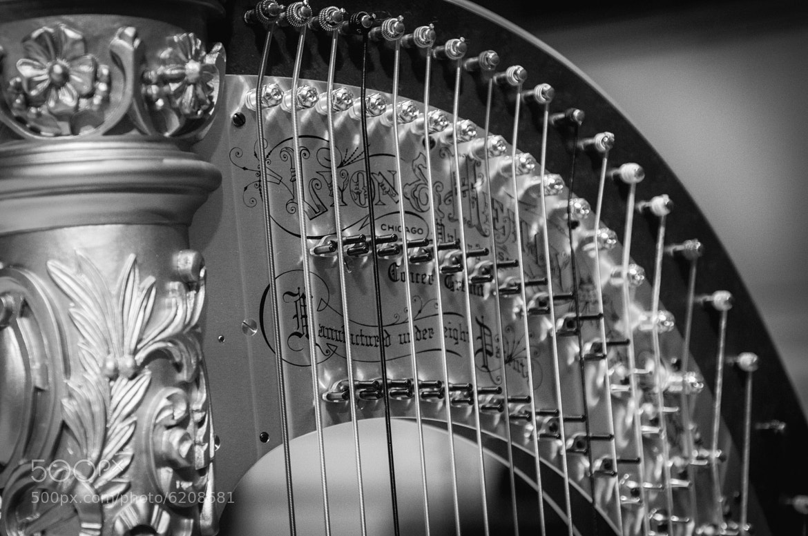 Photograph Harp by Tom Walker on 500px