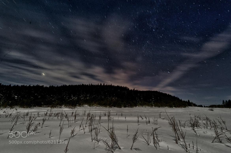 Photograph cold night by Alp Tunali on 500px