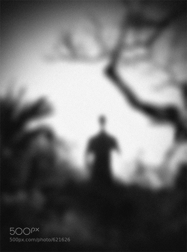 Photograph Secret Garden by Hengki Lee on 500px