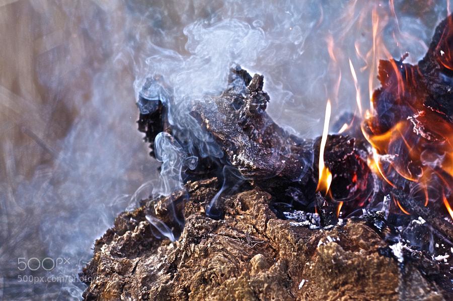Photograph HDR Fire by Selim Özköse on 500px