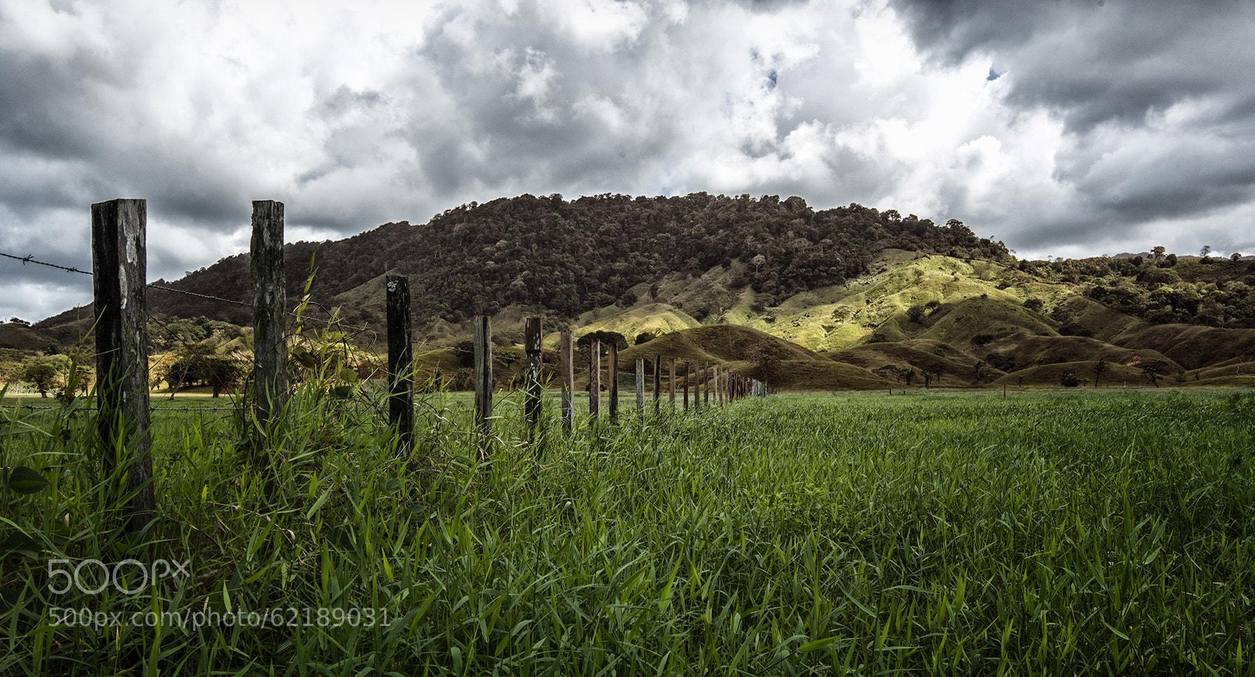 Photograph Panama Plains by Dani Diamond on 500px