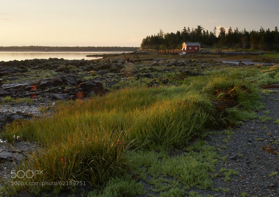 Photograph Low Tide near Grand Harbour, Grand Manan Island by Robert Williams on 500px