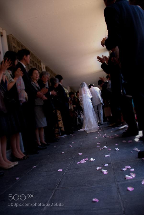 Wedding road by Kengo Hamasaki on 500px.com