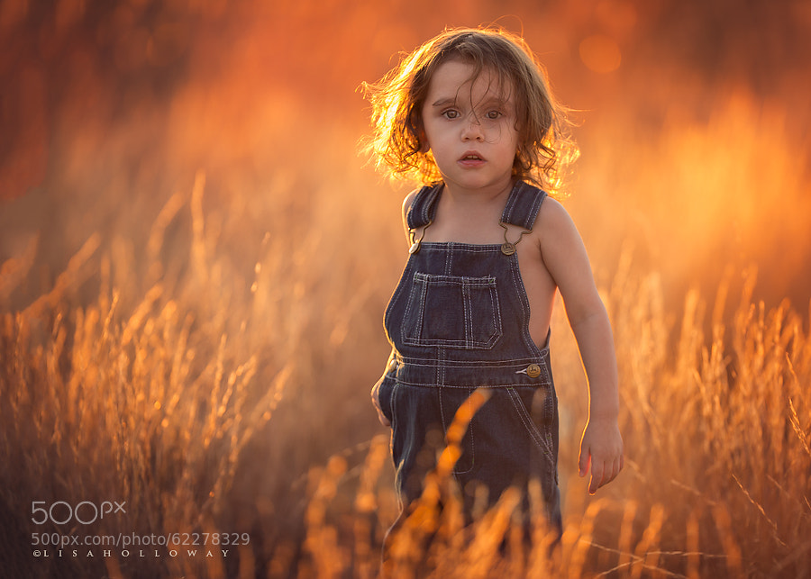 Photograph Golden Boy by Lisa Holloway on 500px