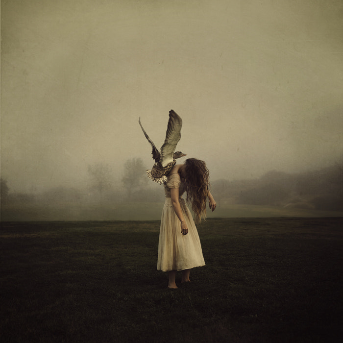 Photograph To Lift Her Up by Brooke Shaden on 500px