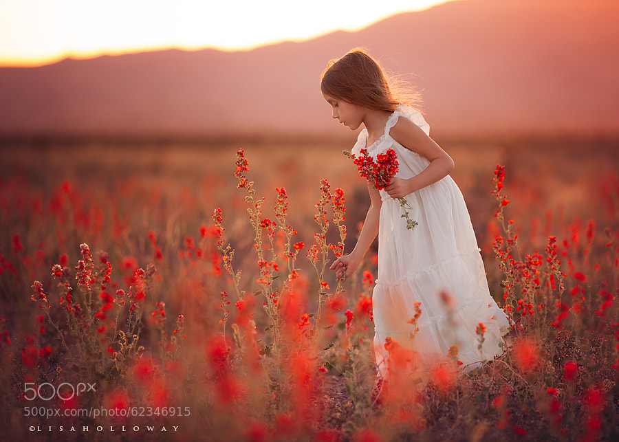 Photograph Dreaming of Spring by Lisa Holloway on 500px