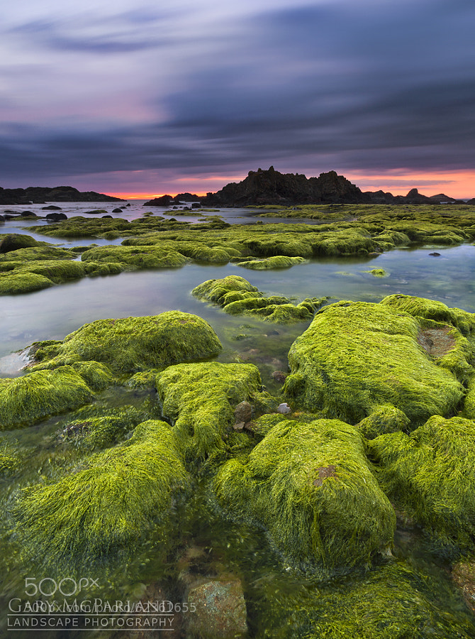 Photograph Sublime Ballintoy by Gary McParland on 500px