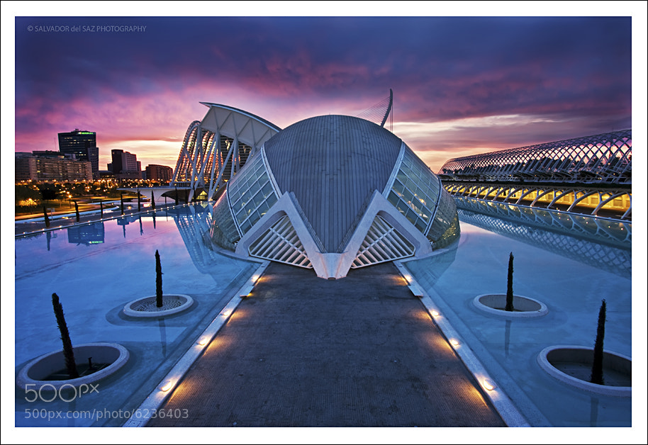 Photograph City of Arts and Sciences at dawn by Salvador del Saz on 500px