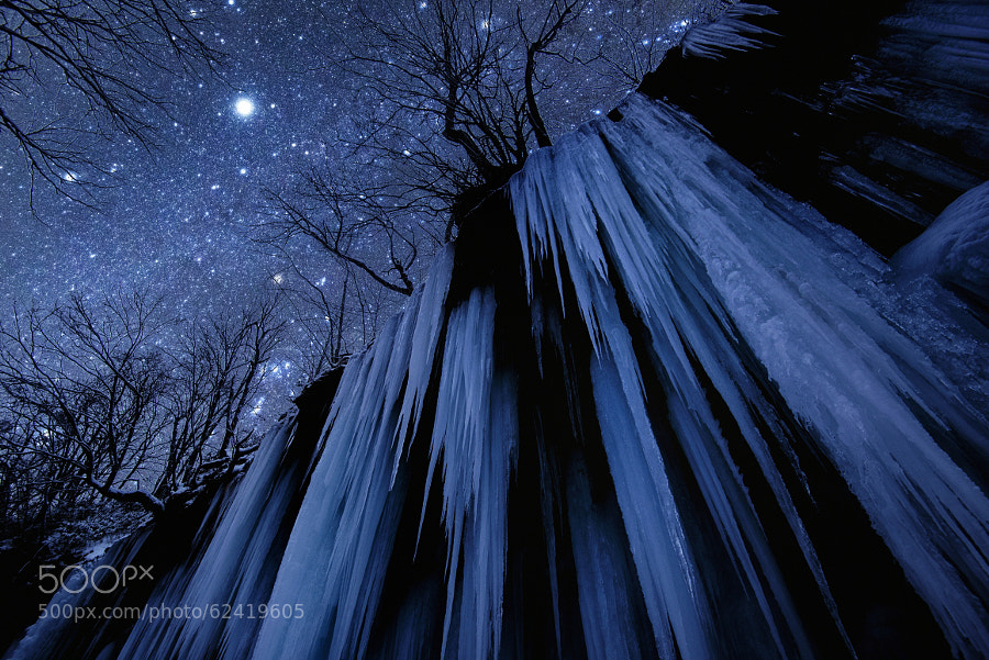 Photograph Freezing Cold Night by Takanobu Nushi on 500px