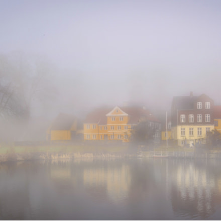 Colorful foggy day