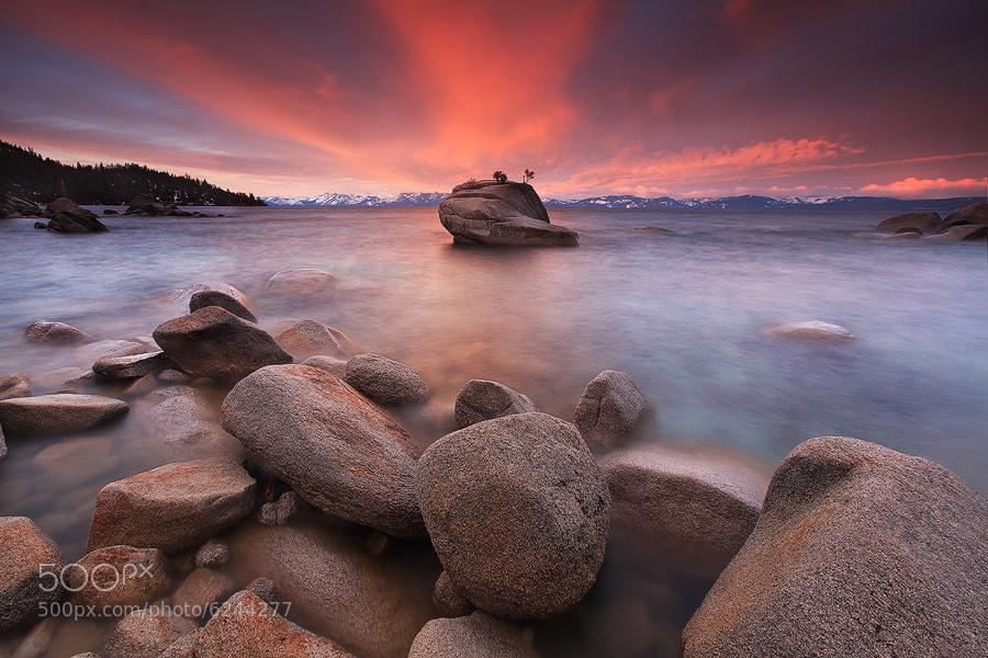 Photograph Bonsai Rock by Alan Chan on 500px