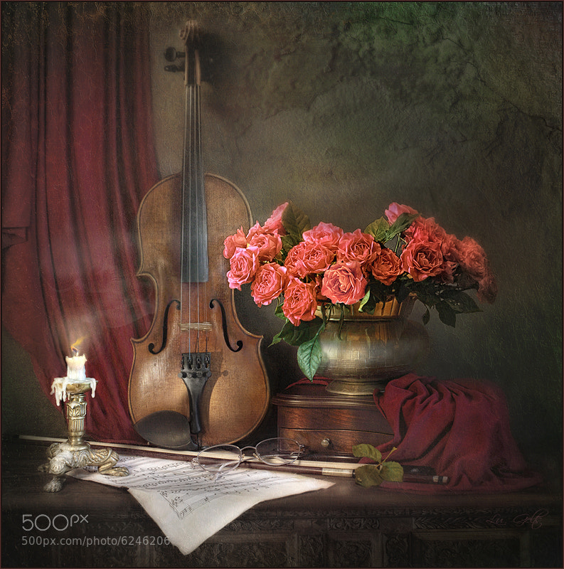 Photograph After the concert by Luiza  Gelts -            Луиза  Гельтс on 500px